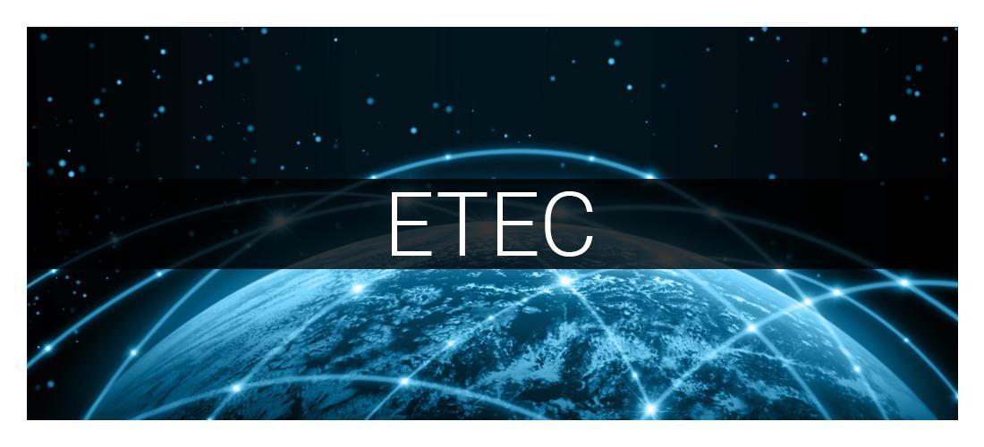 Videoüberwachung Engelsbrand - ETEC Gebäudetechnik: Alarmanlagen, Sicherheitssysteme, Netzwerktechnik, Kameras, Schaltschränke